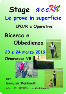 stage superficie mar 19